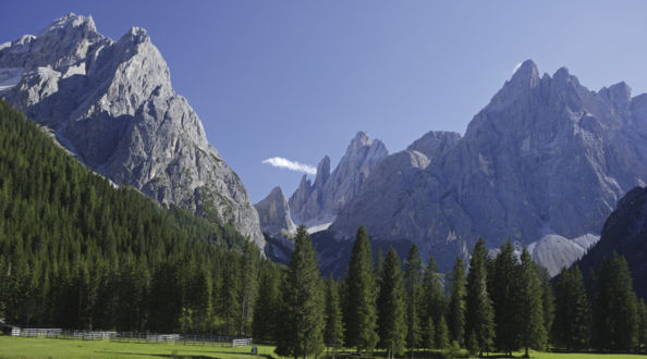 Waldmeditation in Dolomiten, Angebotswoche Olang