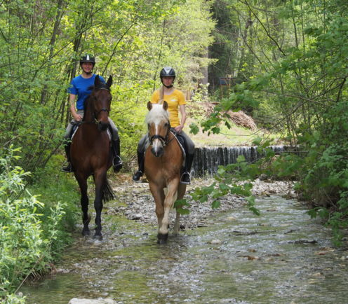 Horse riding holiday in South Tyrol, Hotel in Italy