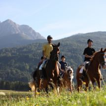 Horse riding South Tyrol, Riding School Tolderhof