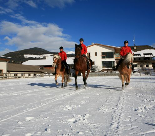 Tolderhof horse riding, winter holiday in South Tyrol