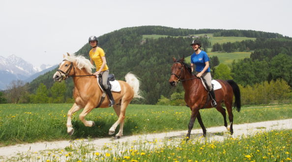 Riding school, holiday in the Dolomites, South Tyrol